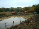Reed Bed Enhancement