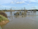 Mortimer Meadow flooded