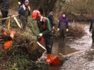 Loddon Rivers Week 2013_10
