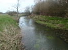 Hawley Meadows 20-03-12_15