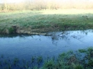 Hawley Meadows 20-03-12_29