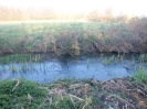 Hawley Meadows 20-03-12_33
