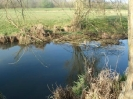 Hawley Meadows 20-03-12_36
