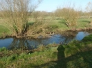 Hawley Meadows 20-03-12_38