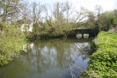 River Loddon at Sandford